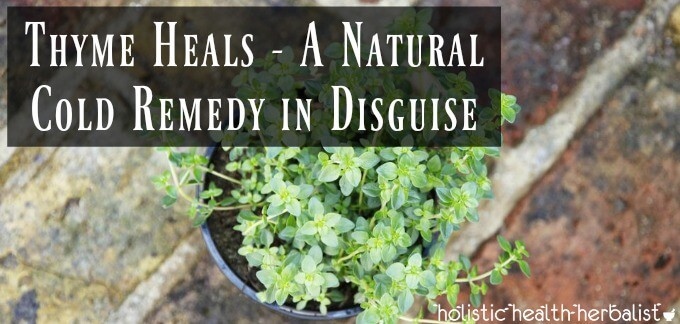 Thyme Heals - A Natural Cold Remedy in Disguise