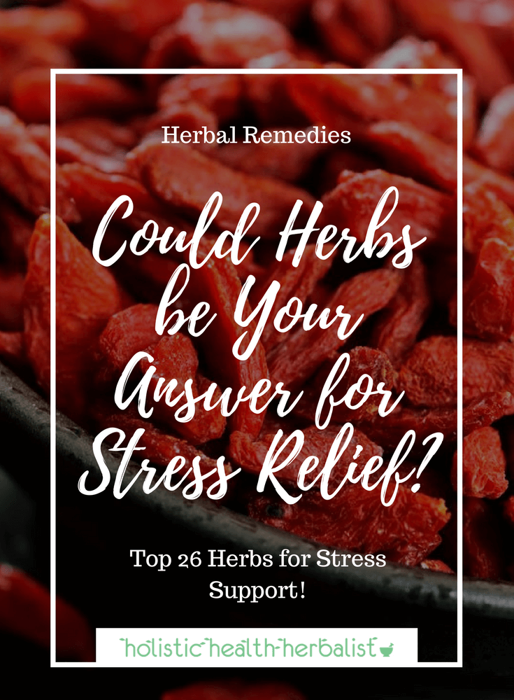 Could Herbs be Your Answer for Stress Relief? - Learn about the best herbs for stress relief and support so that you react to stress in the best way possible.