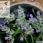 How to Make an Herbal Hydrosol