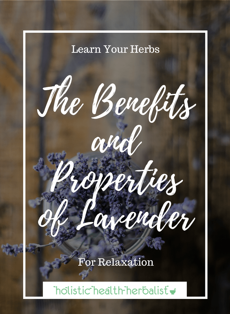 The Benefits and Properties of Lavender - Learn about the many uses of lovely lavender and how to use it in a few delicious recipes!