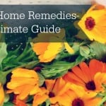 Cold Sore Home Remedies- The Ultimate Guide