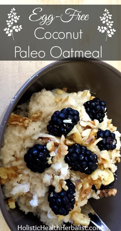Egg Free Coconut Paleo Oatmeal - Learn how to make a filling and healthy alternative to oatmeal to enjoy for breakfast.