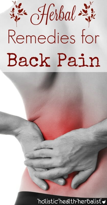 Herbal Remedies for Back Pain - Learn about which herbs treat the underlying causes of back pain including sciatica, inflammation, interstitial fluid stagnation, and bone friction.