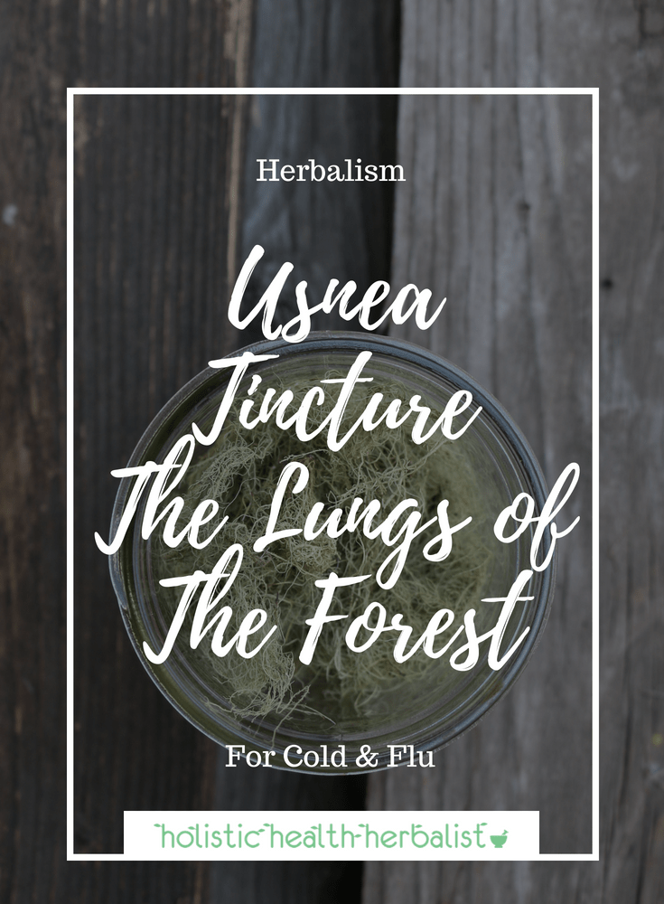Usnea Tincture, The Lungs of The Forest 2