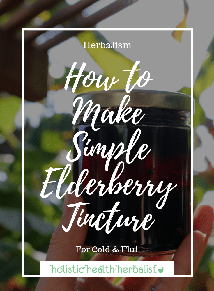 How to Make Simple Elderberry Tincture - This is the perfect remedy for cold and flu season for the entire family.