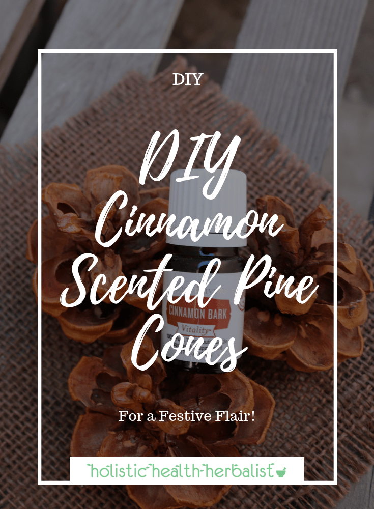 DIY Cinnamon Scented Pine Cones - These are perfect for scenting your home naturally with holiday inspired essential oils!