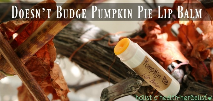 Doesn't Budge Pumpkin Pie Lip Balm