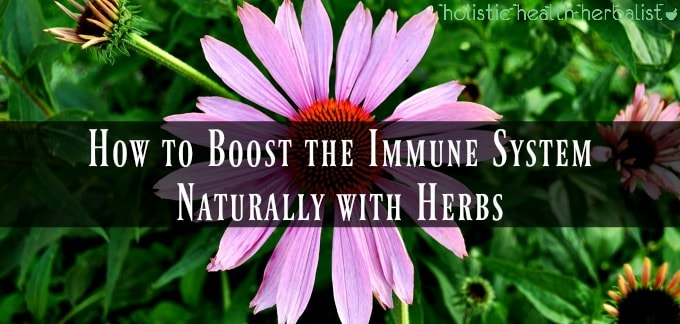 Natural Immune Booster