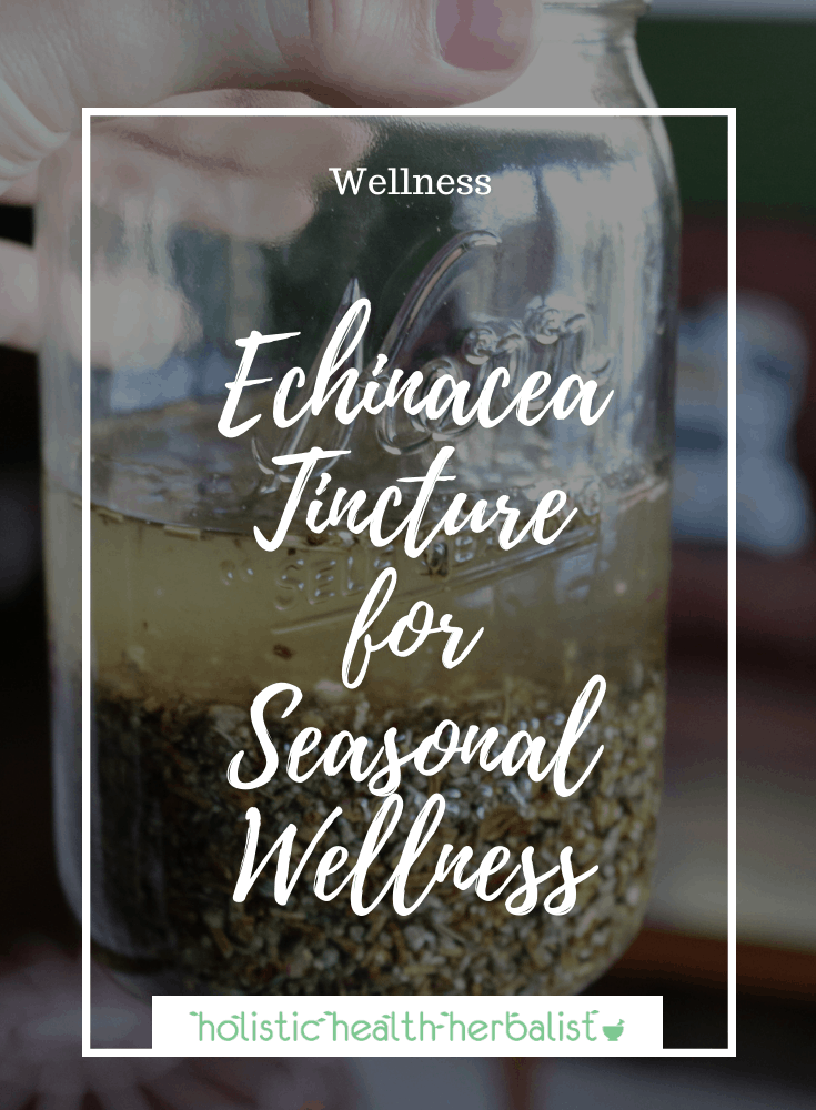 Echinacea Tincture for Seasonal Wellness