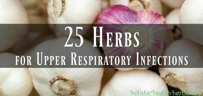 25 Herbs for Upper Respiratory Infections