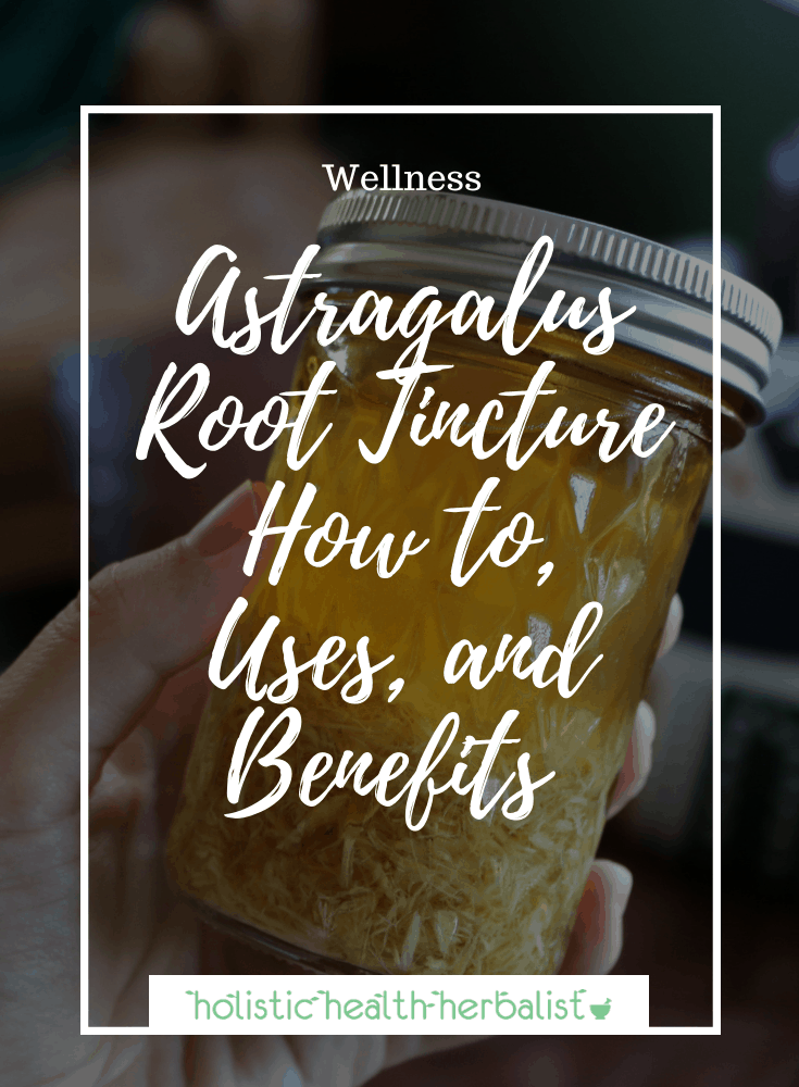 Astragalus Root Tincture – How to, Uses, and Benefits